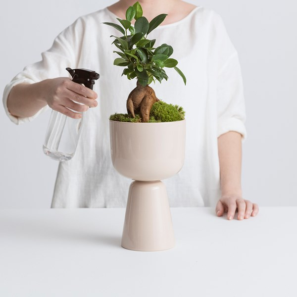 «Don't forget to play» med Iittala